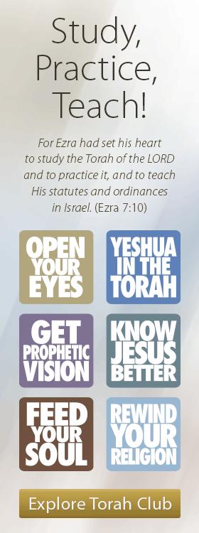 Study, Practice, Teach!