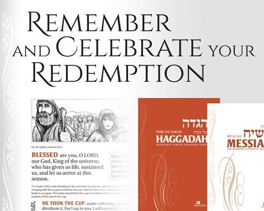 Vine of David Passover Resources